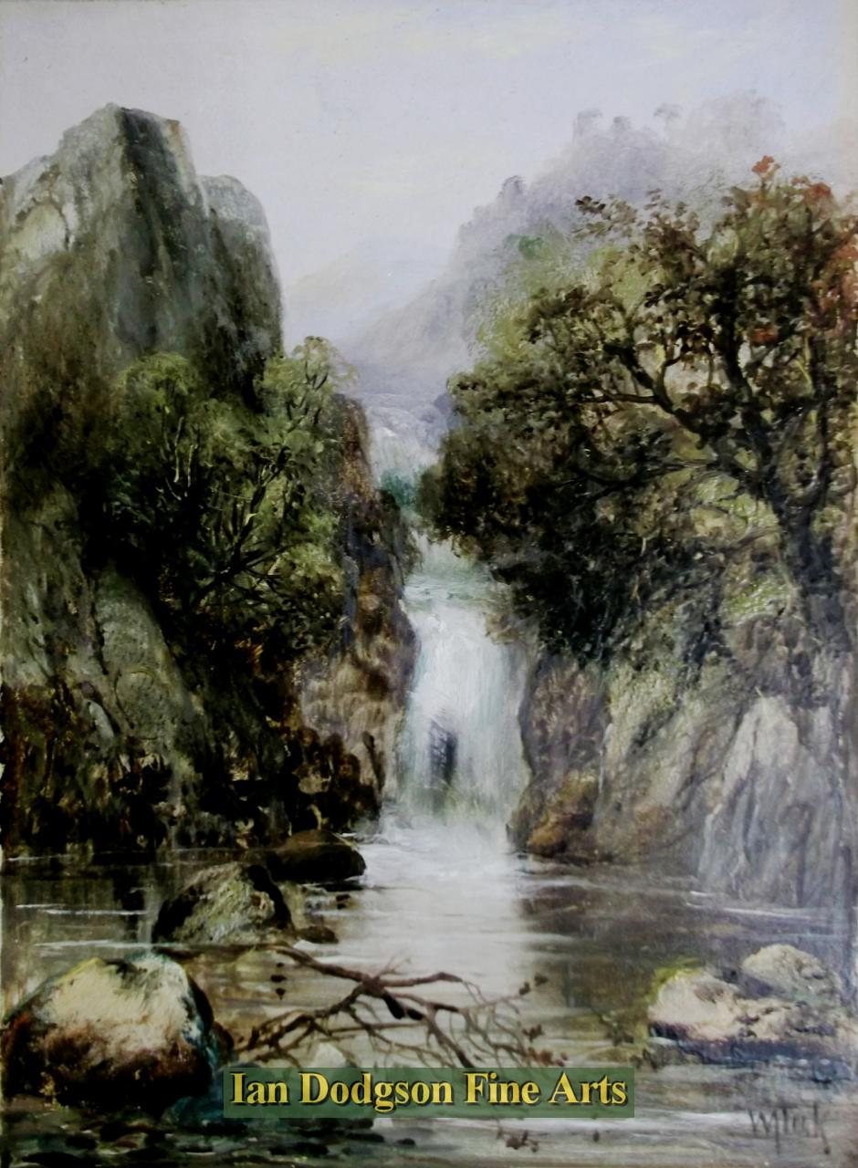 Waterfall by William Took.