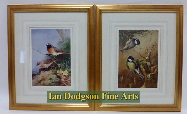 Archibald Thorburn R.A. - Black Redstart & Coal & Great Tit Limited edition print (c1990)