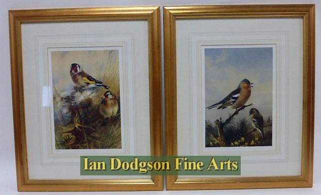 Archibald Thorburn R.A. - Goldfinch & Chaffinch