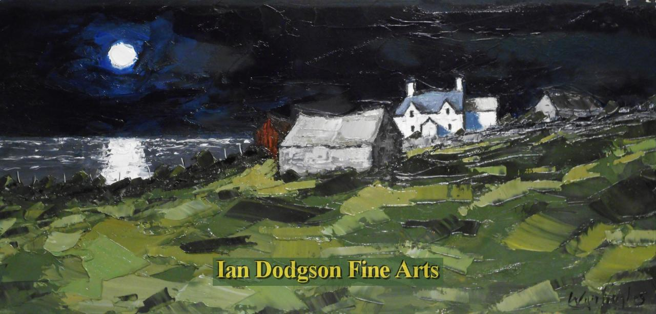Wyn Hughes - Coastal Farm Bodorgan, Moonlight